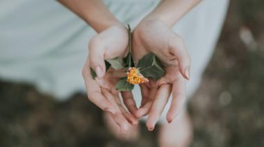 The Self-Care Vow: Turning the Bodhisattva's Gaze Inward